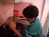 Pupil cooking on a stove