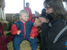 A visit to a farm - child sat on a hay bale
